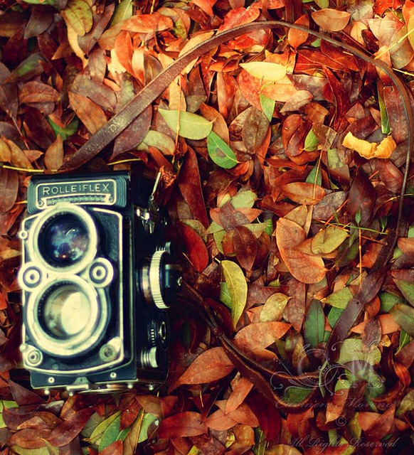 Vintage_Photography_2